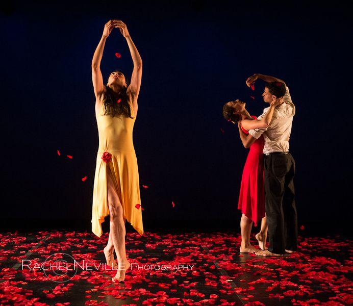 dancer and falling rose petals latin choreographers festival rachel neville